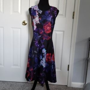 Gorgeous NWT DKNY Lined Dress sz 6